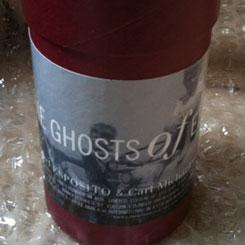 Michael Esposito & CM von Hausswolff - The Ghosts of Effingham